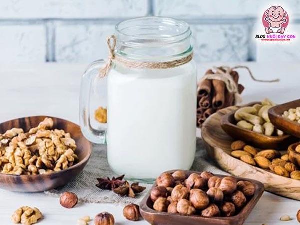 Máy làm sữa hạt có gì đặc biệt