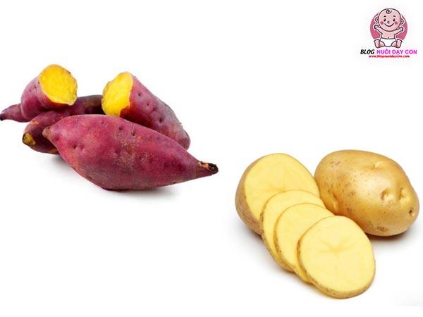 Khoai tây và khoai lang giàu carbohydrate