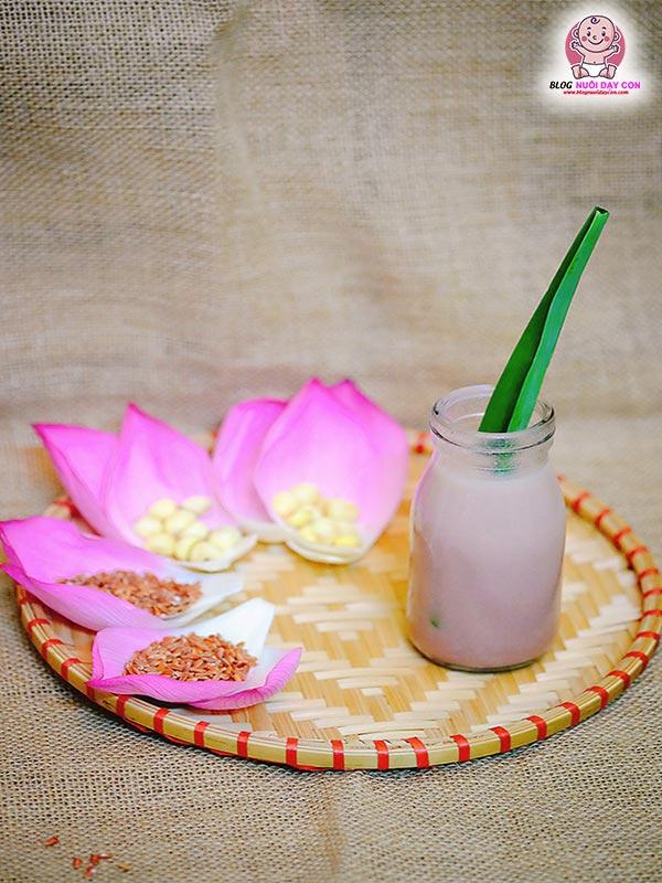Cách làm sữa hạt sen gạo lứt