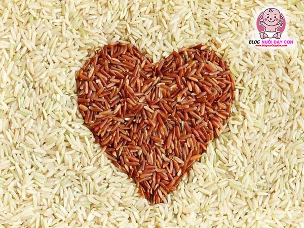Gạo lứt là một loại ngũ cốc giàu dinh dưỡng